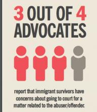 infographic that says three out of four advocates report that immigrant survivors report concerns about going to court