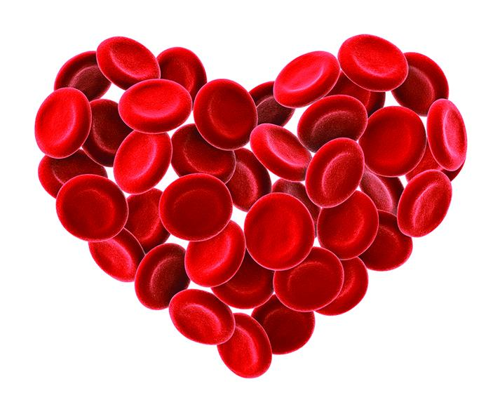 heart of red blood cells