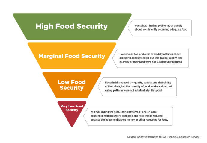 FoodInsecurityPyramid.png