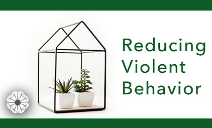 Reducing violent behavior
