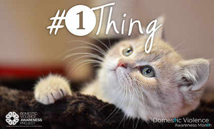 cat looking up at 1Thing logo