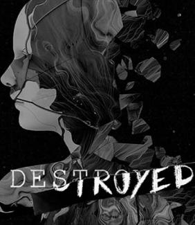 "cover of ""Destroyed"" report"
